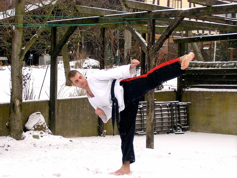peda deshi karate kempo peter lauritis koshokun 0069