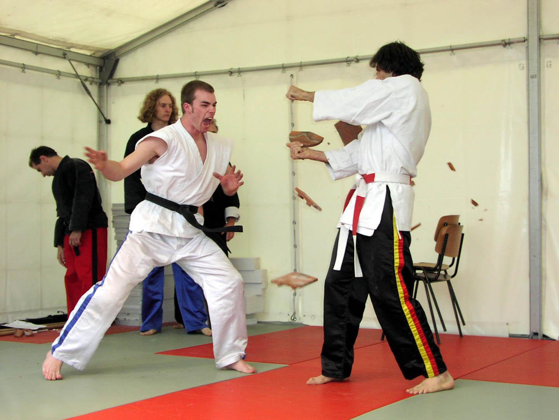 peda deshi karate kempo peter lauritis koshokun 0098