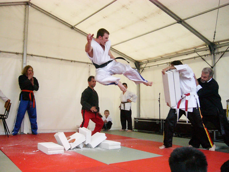 peda deshi karate kempo peter lauritis koshokun 0100