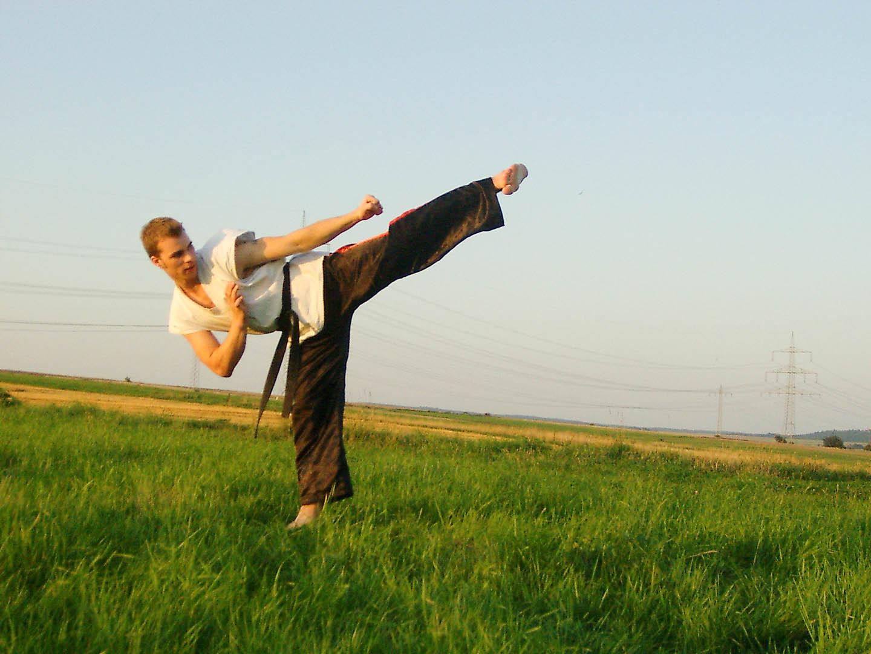 peda deshi karate kempo peter lauritis koshokun 0102