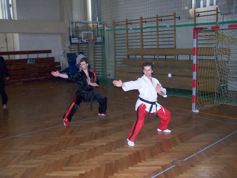 peda deshi karate kempo peter lauritis koshokun 0135