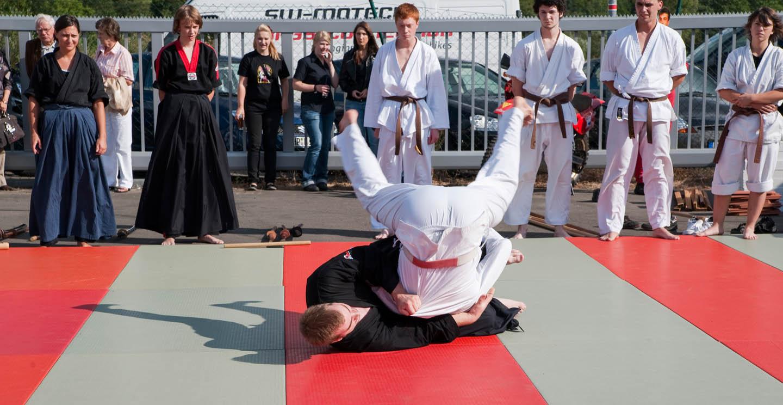 peda deshi karate kempo peter lauritis koshokun 0150 1