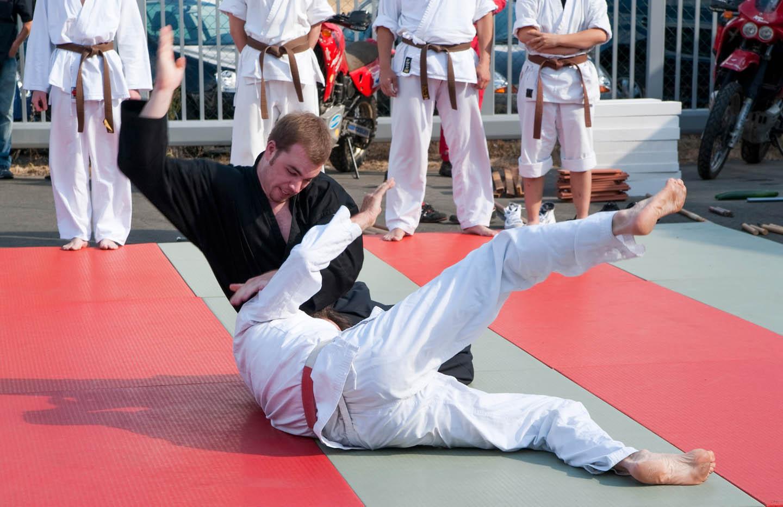 peda deshi karate kempo peter lauritis koshokun 0152 1