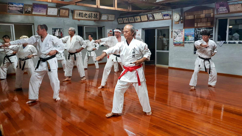 peda deshi karate kempo peter lauritis koshokun 0232