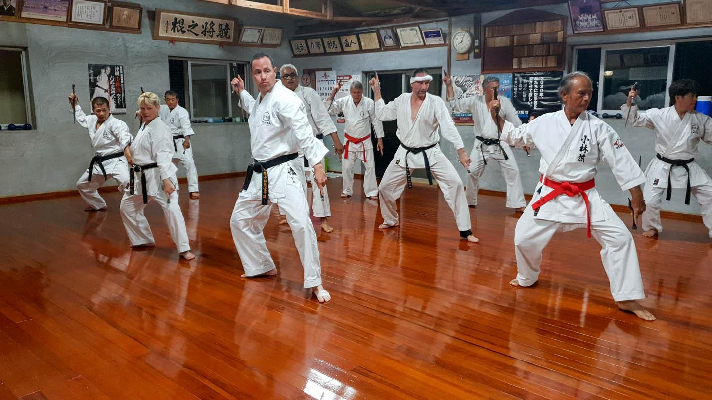 peda deshi karate kempo peter lauritis koshokun 0233