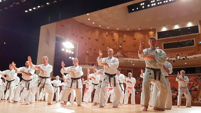 peda deshi karate kempo peter lauritis koshokun 0271