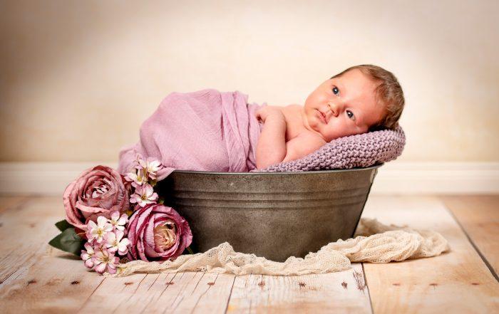 babyfotos zu verschenken