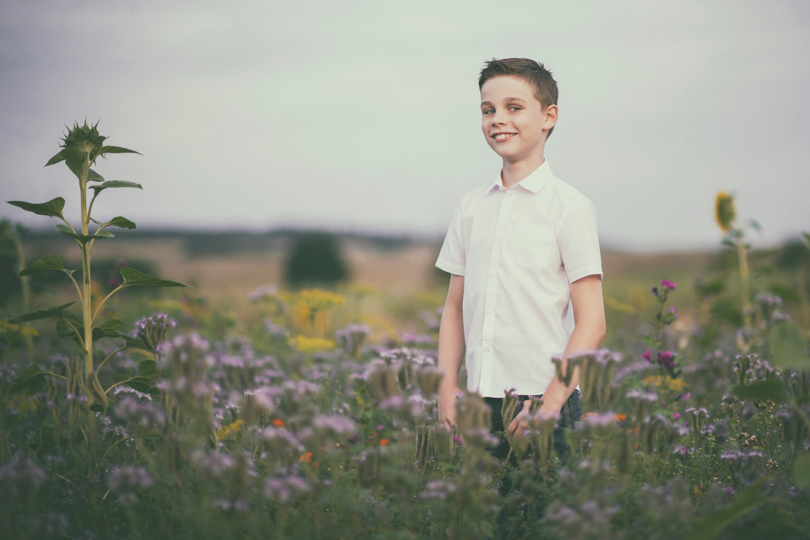 geschwister shooting im wildblumenfeld